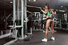 Beautiful sexy young woman in gym. Beautiful sporty sexy woman doing squat workout in gym Stock Image