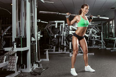 Beautiful sexy young woman in gym Royalty Free Stock Photo