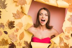 Beautiful young woman lies on autumn background. Surprised woman on autumn leaves background. Funny expression. Expression face. Crazy people stock photos