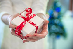 Beautiful young woman in white sweater sitting next to white christmas tree, holding present. Christmas photo. Stock Images