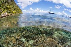 Beautiful Shallow Coral Reef in Raja Ampat Stock Photo