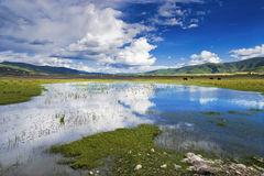 Beautiful shangri-la. This is a picture of the beautiful shangri-la Stock Images