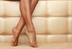 Beautiful shapely female legs Royalty Free Stock Photography