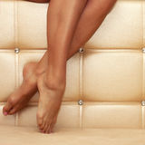 Beautiful shapely female legs Royalty Free Stock Images