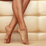 Beautiful shapely female legs Stock Photo
