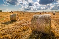 Beautiful sheaf of hay at summer Stock Images