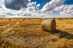 Beautiful sheaf of hay at sunny day Royalty Free Stock Images