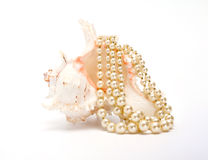 Beautiful shell with beads Royalty Free Stock Photography