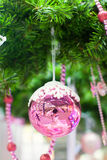 Beautiful shiny pink ball on the Christmas tree Stock Image
