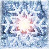 Beautiful shiny snowflake Royalty Free Stock Photos