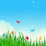 Beautiful shiny summer dreamy meadow. Royalty Free Stock Image