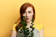 Beautiful shocked cute girl holding plant and looking at the camera royalty free stock images