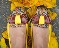 Beautiful shoes. In the autumn Stock Photography