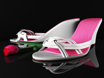 Beautiful shoes and tulips Royalty Free Stock Image