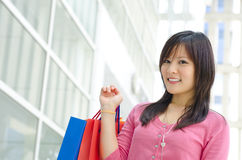 Beautiful shopper Royalty Free Stock Photos