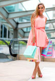 Beautiful shopping woman Stock Photography