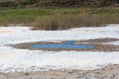 Beautiful shore of lake Baskunchak. Stock Image