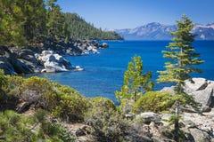 Beautiful Shoreline of Lake Tahoe Stock Images