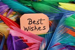 Best wishes. Beautiful shot of best wishes written on paper with background made of feathers royalty free stock photo
