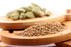 Carom seeds Stock Images