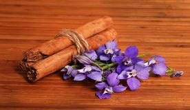 Cinnamon and flowers Royalty Free Stock Photo