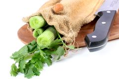 Dip ingredients. Beautiful shot of cut green onions and coriander leaves on white background Stock Images