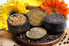 Indian spices. Beautiful shot of different types of indian spices Royalty Free Stock Images