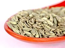 Fennel seeds close up royalty free stock photography