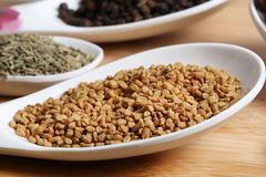 Fenugreek seeds Royalty Free Stock Photography