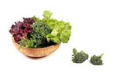 Vegan diet. Beautiful shot of fresh vegetables and green leaves on white background Royalty Free Stock Photos