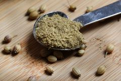 Grinded coriander spice Royalty Free Stock Photography