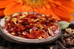 Red chilly flakes. Beautiful shot of hot red red chilly flakes stock photos