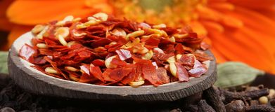 Red chilly flakes. Beautiful shot of hot red red chilly flakes royalty free stock photo