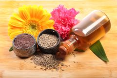 Indian food ingredients Royalty Free Stock Photography