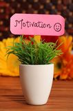 Motivation. Beautiful shot of motivation board stuck in planted pot royalty free stock photos