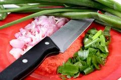 Cut onion Stock Photo