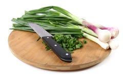 Cut onion Stock Image