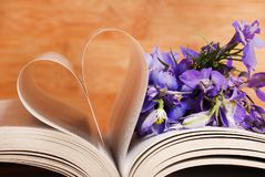 Heart and flowers royalty free stock photos