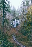 Beautiful shot of a waterfall in the forest surrounded by tall trees. And greenery royalty free stock photography