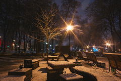 Beautiful silent night in winter city outdoor Royalty Free Stock Photography
