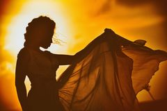 Beautiful silhouette of a girl in a guipure dress on a sunset background Royalty Free Stock Photography