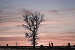 Beautiful silhouette grave yard with a tree against pretty sunset. Stock Images