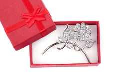 Beautiful silver brooch Royalty Free Stock Photos