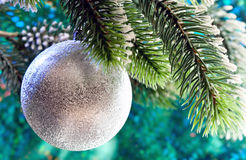 Beautiful silvery New Year's ball on a branch of a Christmas tree.close up on a green background Stock Images