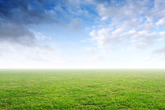 Beautiful simple background with green grass and blue sky. With clouds stock photography