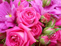 Beautiful and simple bouquet with pink roses. Bouquet with pink roses and pink little bulb just perfect for a beautiful woman Royalty Free Stock Image