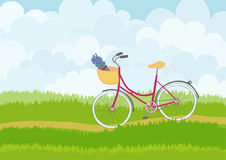 Beautiful simple cartoon meadow with pink city bike on sky background. Stock Photography