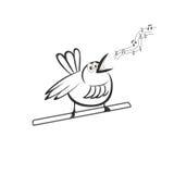 The beautiful singing bird on a branch Stock Photos