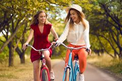 Beautiful sisters riding bicycles in park. In park in summer Stock Images