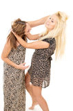 Beautiful sisters swear and fight Stock Image